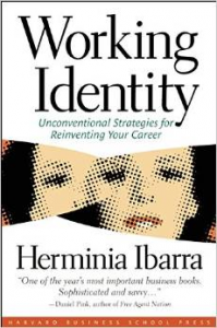 Working Identity - the most important book I have ever read